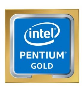 Intel Pentium Gold G6600 procesoare 4,2 GHz Casetă 4 Mega bites