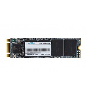Origin Storage NB-256SSD-M.2 unități SSD 256 Giga Bites ATA III Serial 3D TLC