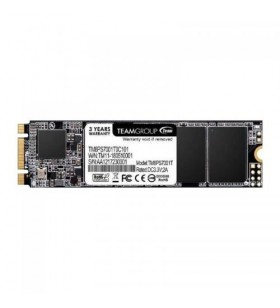 SSD TeamGroup MS30 256GB,...