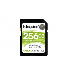 Kingston Technology Canvas Select Plus memorii flash 256 Giga Bites SDXC Clasa 10 UHS-I