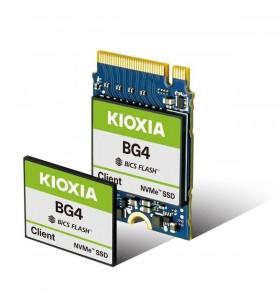 BG4 CSSD 256 GB...